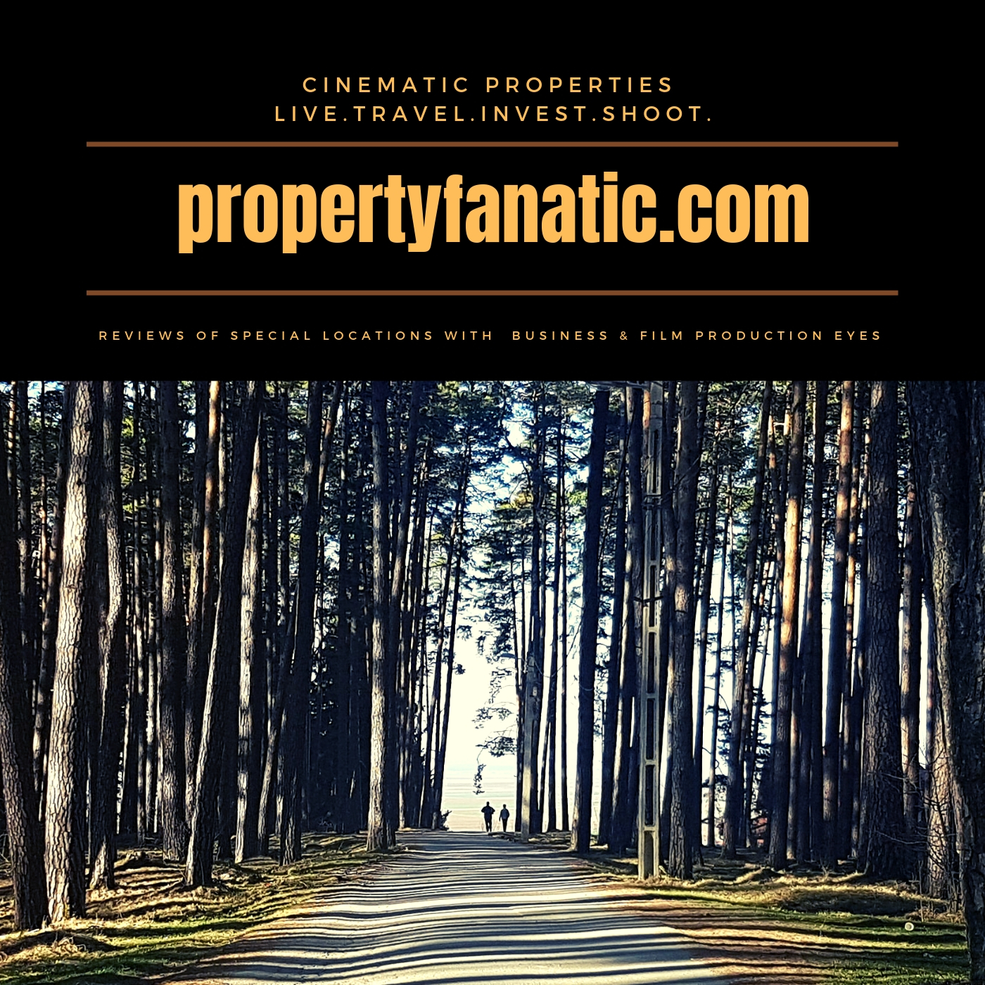 property-fanatic