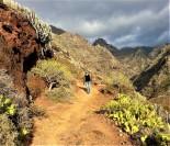 hiking-Punta-Hidalgo